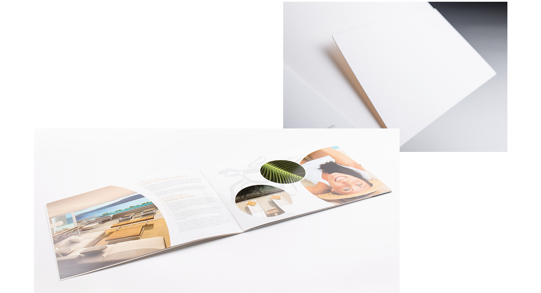 Alanna Brochure