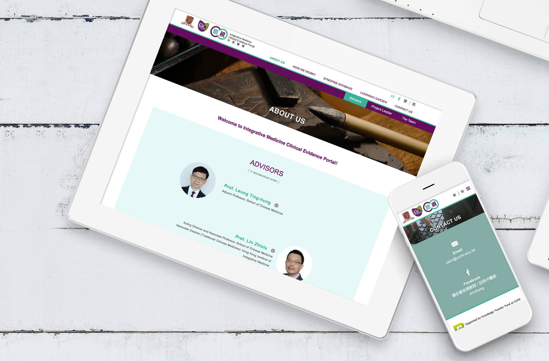 Integrative Medicine Clinical Evidence Portal