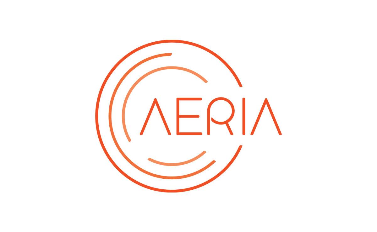 AERIA - Aerial Art Dance