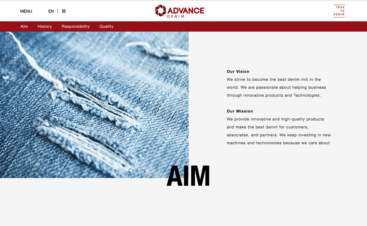 advance_denim-homepage-02.jpg
